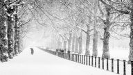 winter_snow_people_park_city_London_road_trees_2048x1365