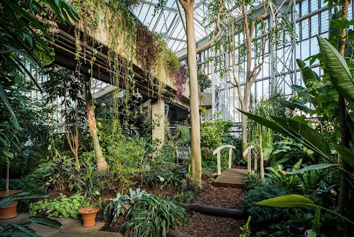 Barbican Conservatory   London Staycation Ideas On a Budget   Clink Hostels